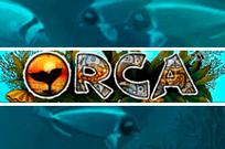 Игровые автоматы Orca