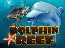 Dolphin Reef в казино онлайн