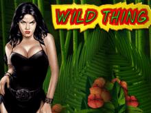 Игровые автоматы Wild Thing
